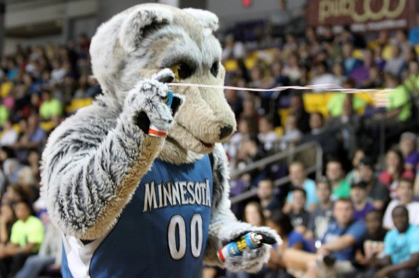 Minnesota Timberwolves: History and Facts behind Their Name