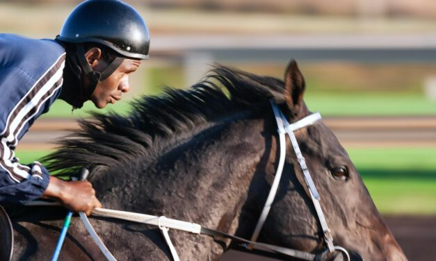 A Paradigm To Successful 2019 Preakness Stakes Betting
